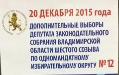 Выборы-Ковров6